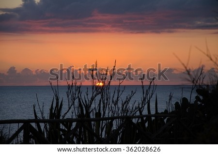 marina di Selinunte archaeological site of the ancient Greek acropolis sicily italy - stock photo