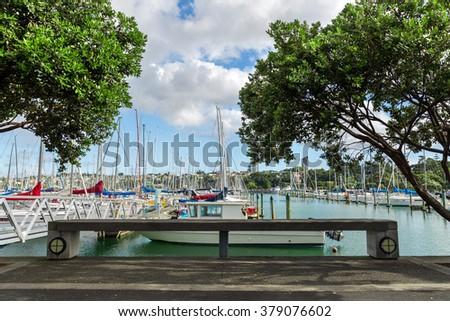 Marina in Auckland - stock photo