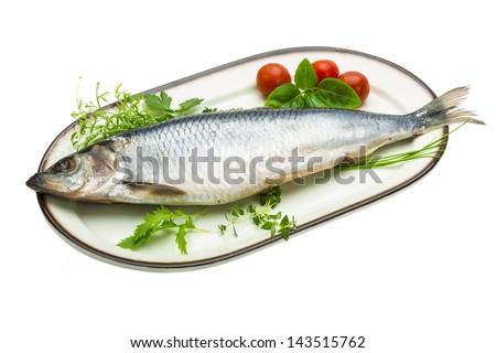 Marinated herring with herbs - stock photo