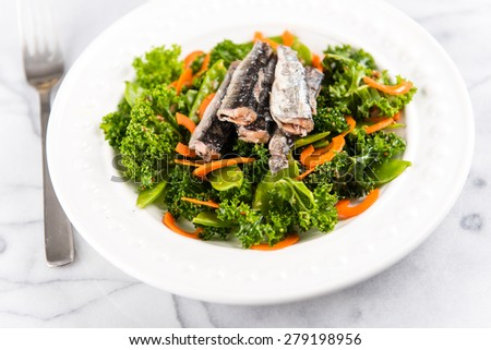Marinated Kale and Carrots Salad with Snap Peas and Canned Sardines - stock photo