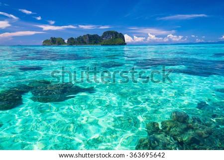 Marine Fantasy Nature And Nobody  - stock photo