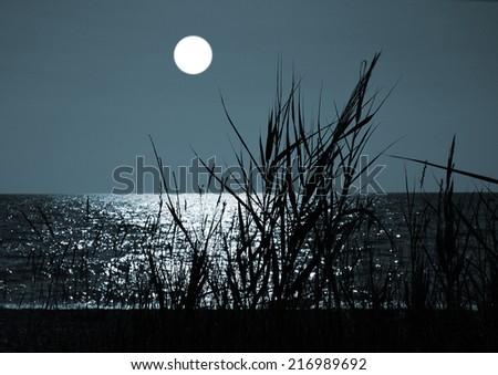 Marine landscape with moon - stock photo