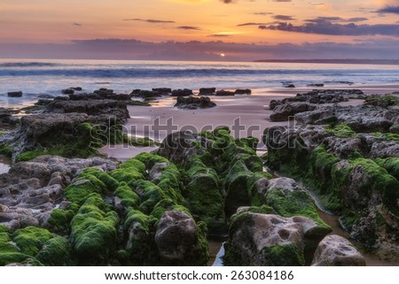 Marine magical landscape before sunset. Green algae on the rocks. Albufeira beach Gale. - stock photo