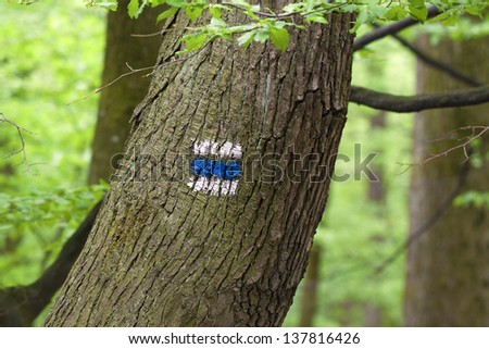 mark for hiking tourism in forest - stock photo