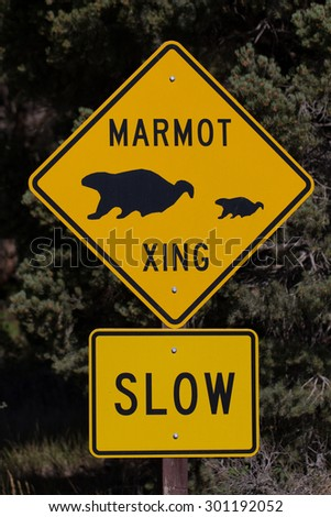 Marmot Crossing sign on a road in Great Basin National Park in Nevada - stock photo