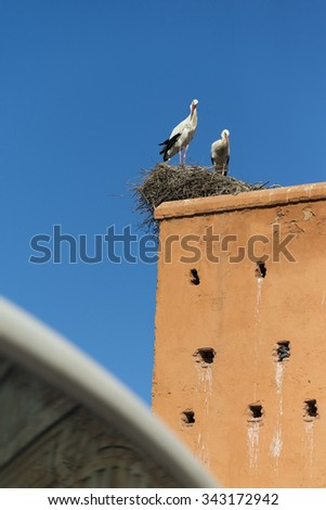 MARRAKESH, MOROCCO: city wall with Bab Agnaou and stork nests on wall