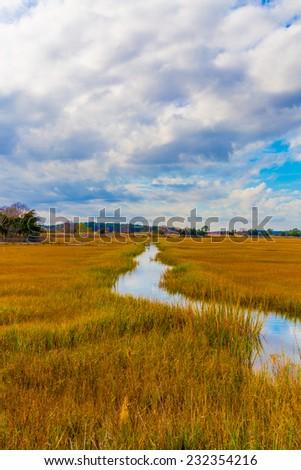 Marsh view along the coastal Atlantic in Lewes, Delaware. - stock photo