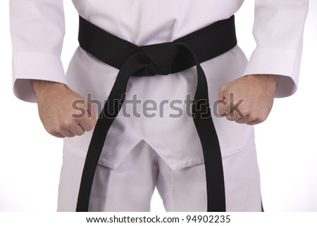 Martial artist with black belt - stock photo