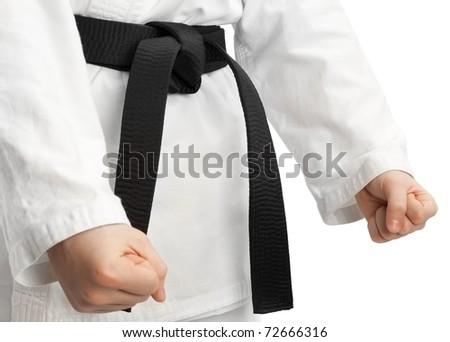 Martial arts stance, isolated on white - stock photo