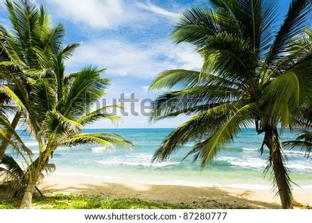 Martin's Bay, Barbados, Caribbean - stock photo