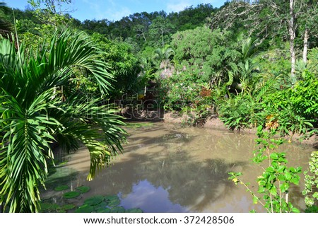 Martinique, the picturesque slave savanna of les trois ilets in West Indies