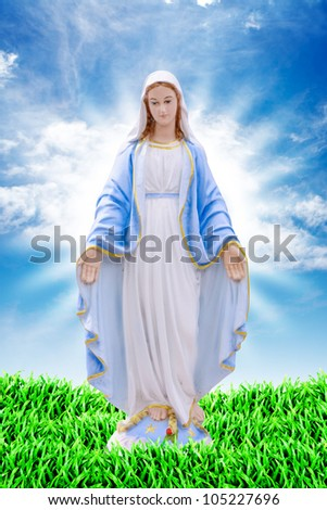 Mary on grass land - stock photo