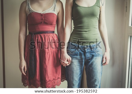 mask rabbit and horse mask lesbian couple at home - stock photo