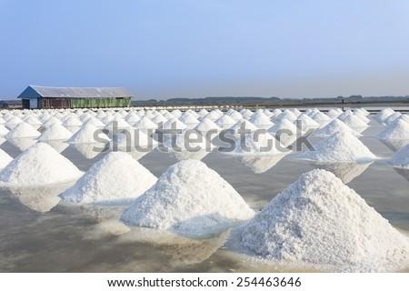 Mass of salt in the salt sea salt farm - stock photo