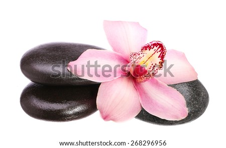 massage basalt stones and orchid flower isolated on white background