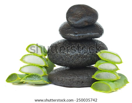 massage black stones with aloe vera isolated on white background