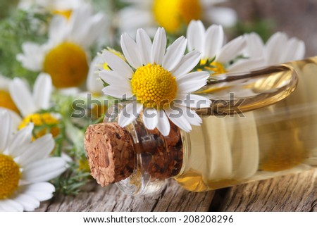 massage oil in the glass bottle on the background of camomile flowers macro on wooden table horizontal  - stock photo
