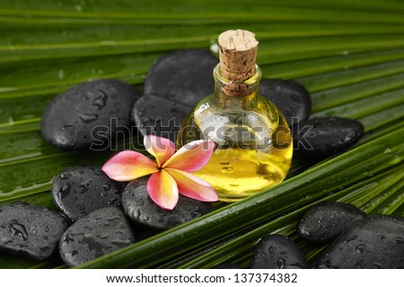Massage oil with frangipani and wet spa stones on palm leaf texture - stock photo
