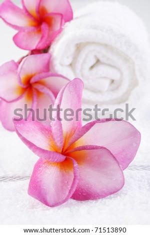 massage towel with plumeria flower - stock photo