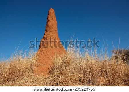 Massive termite mound against a blue sky, southern Africa
