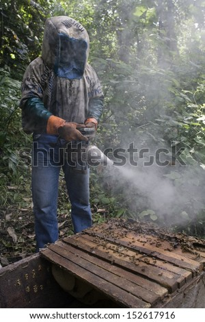 MATADI, DEMOCRATIC REPUBLIC OF THE CONGO, MAY 2009: An unidentified beekeeper showing the honeycomb. - stock photo