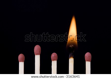 Matches over black background. One of them is burning and the others are new. - stock photo