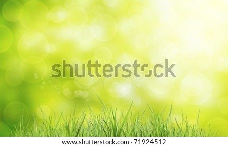 Material of grass - stock photo