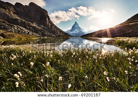 Matterhorn reflected in the Riffelsee and shiny backlit flowers