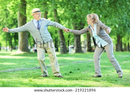 Mature couple enjoying a summer day in a park having fun in a meadow - stock photo