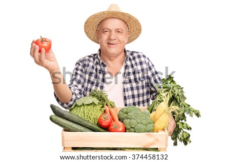 Mature farmer standing behind a wooden crate full of vegetables and holding a single tomato isolated on white background - stock photo