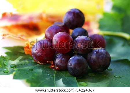 Mature red grapes with leves. - stock photo