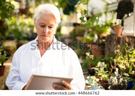 Mature scientist using tablet computer by plants at grenhouse - stock photo