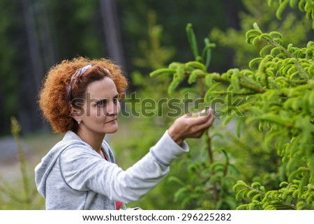 Mature woman picking fir buds in the mountain woods - stock photo