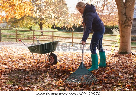 Rake Stock Images Royalty Free Images Amp Vectors