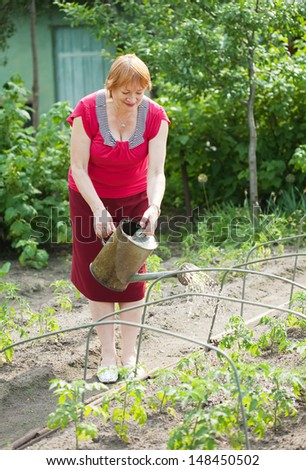 Mature woman watering plant at vegetables garden