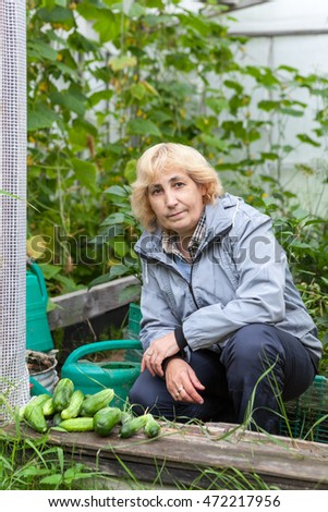 Mature woman with cucumbers, autumn harvest from greenhouse