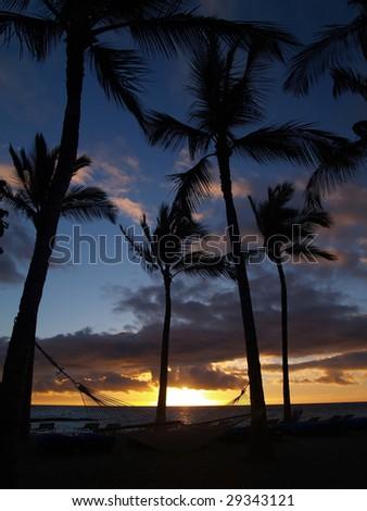 Mauna Lani Sunset and hammock - stock photo
