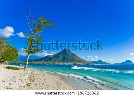 Mauritius Beach - stock photo