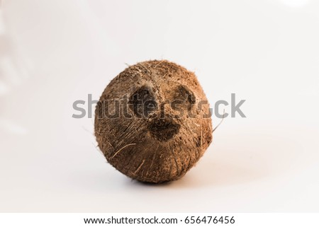 May 20 Kiev, Ukraine. Ripe, whole brown coconut on a white background.