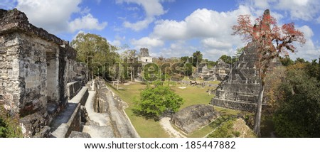 Mayan pyramid in Tikal, Guatemala - stock photo