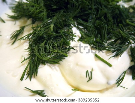 mayonnaise sauce with dill - stock photo