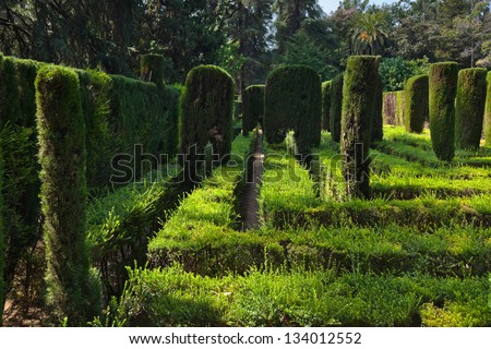 Maze at Real Alcazar Gardens in Seville Spain - nature background - stock photo