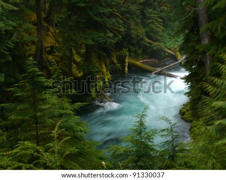 McKenzie River beautifully flows below Koosah Falls