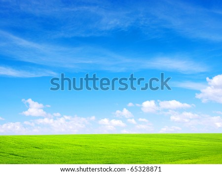 meadow - stock photo