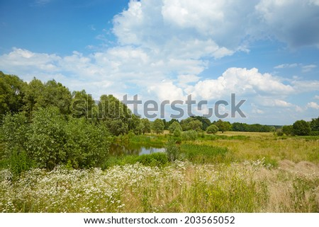 Meadow and a lake in the woods. Typical summer landscape in Europe. - stock photo