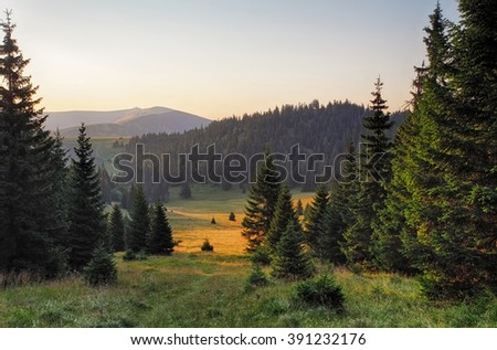 Meadow and forest in Fatras mountains - stock photo