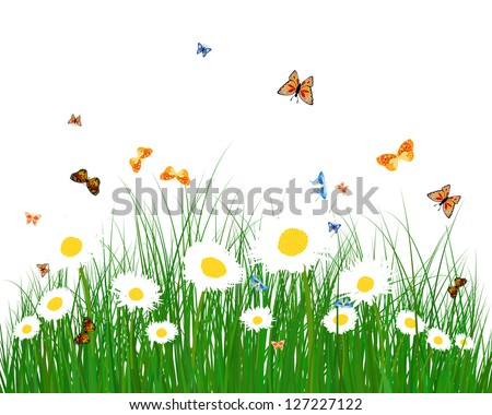 Meadow color background with butterflies