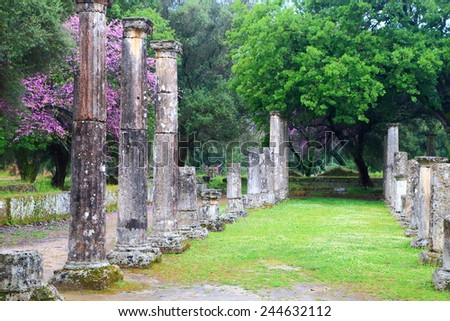 Meadow sided by rows of columns in the ancient sanctuary at Olympia, Greece - stock photo