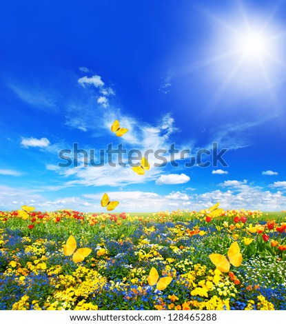 green grass blue sky flowers. meadow with assorted flowers in green grass spring landscape butterflies and sunny blue sky o