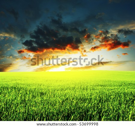 Meadow with green grass and sunset clouds